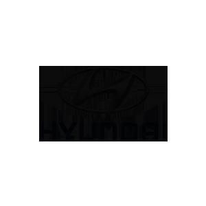 Hyundai Referenz