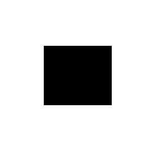 Kodak Referenz