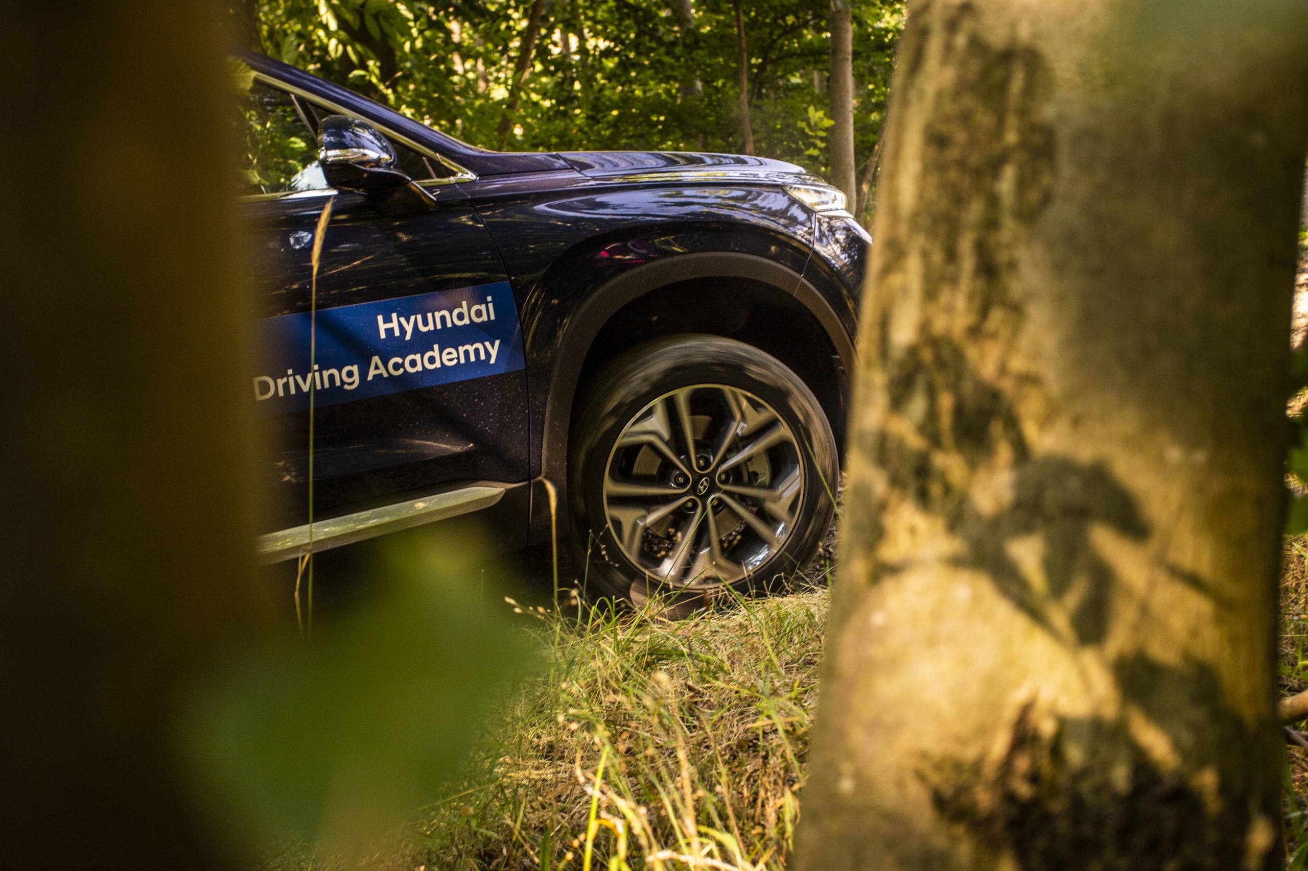 Hyundai im Wald hinter einen Baum
